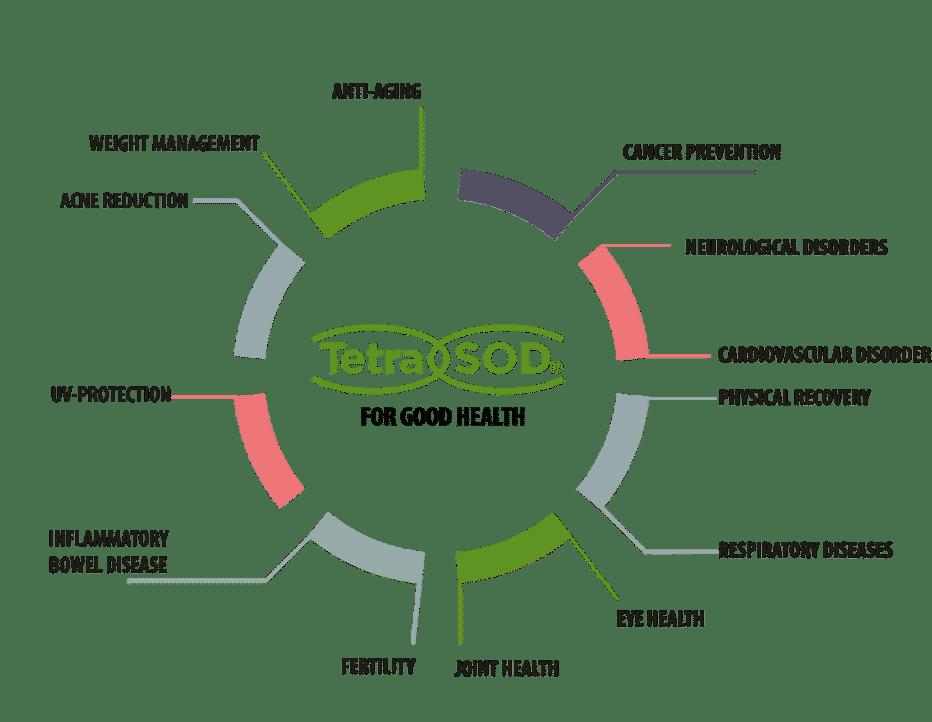 TetraSOD, Lc Ingrédients, Actifs bio disponibles, Fournisseur de compléments alimentaires, marque blanche, Cynatine, Cynatine TOP, Cynatine HNS, Melatine, Melaline